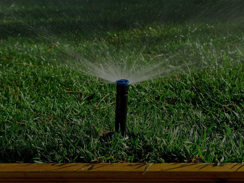 Shorewood Irrigation