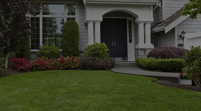 Naperville Landscaping